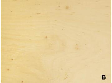 Фанера ФК 1/2 В/ВВ (Беларусь) 1525х1525х8 фото 1 — ПлитТоргСервис