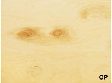 Фанера водостойкая ФСФ СР/С, береза 2500х1250х24 фото 1 — ПлитТоргСервис