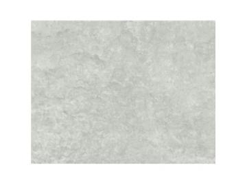 Столешница 6460 FG Raw Concrete 4100х600х38E PFL фото 1 — ПлитТоргСервис